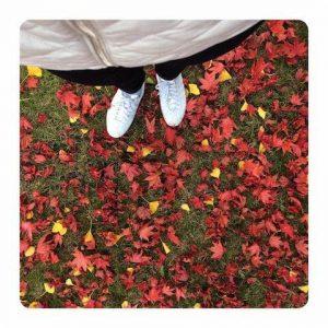 musim gugur di eropa
