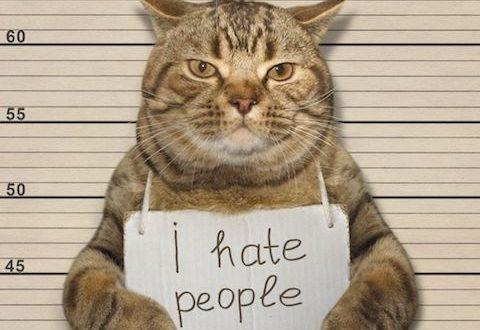 benci untuk mencinta