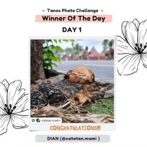 PEMENANG Tanos Photo Challenge Day 1