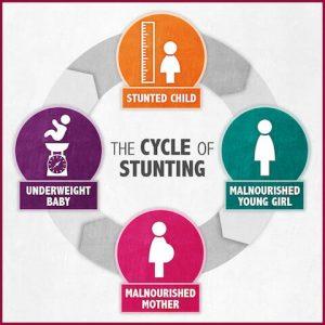 Siklus Stunting