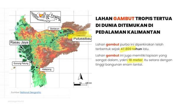lahan gambut tropis tertua